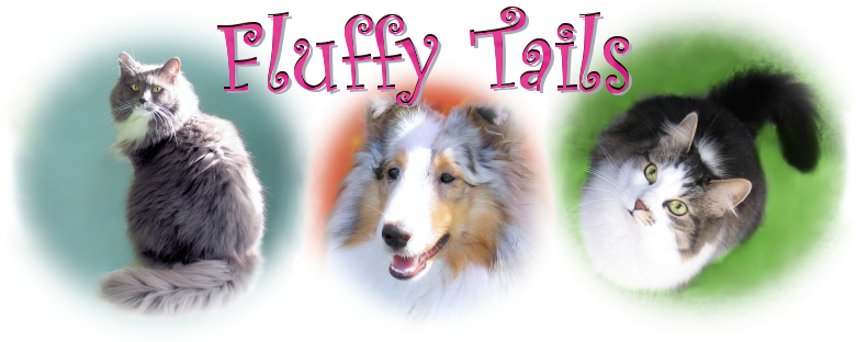 Welcome to Fluffy Tails