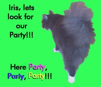 Fern looking for their party!