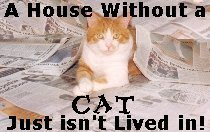 A house without a cat, just isn't lived in
