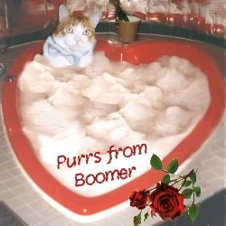 Boomer IN Heart Shaped Jacuzzi