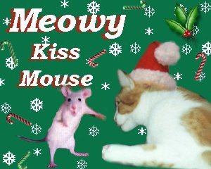 Boomer kissing mouse