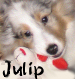 Link to Julip's page