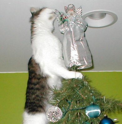 angel eater - Cat Christmas Decorations