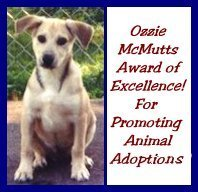 Ozzie Mcmutts Award for Promoting Animal Adoptions