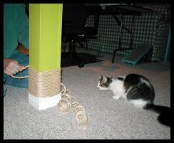 wrapping sisal